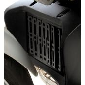 Oil cooler guard, BMW R1200R, to 2010