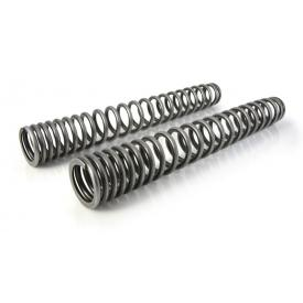 Touratech Progressive Fork Springs, 25mm Low, Honda Africa Twin CRF1000L Product Thumbnail